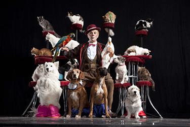 Popovich Comedy Pet Theatre