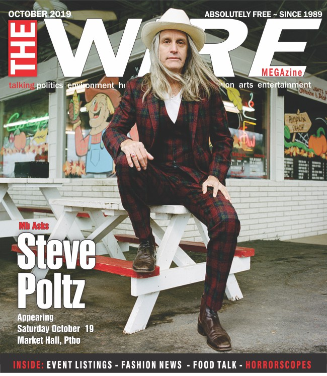 The Wire Megazine Steve Poltz Cover